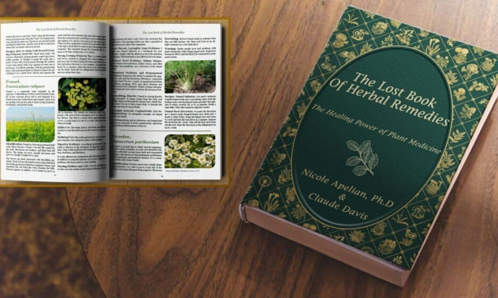 The Lost Book of Remedies book